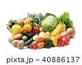 野菜と果物の集合 40886137