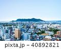 函館市の街並みと函館山 (五稜郭タワーからの眺望)  ※2017年10月撮影 40892821