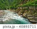 猿飛峡遊歩道から見た黒部川 40893711