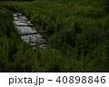 ホタル 鈴鹿ホタルの里 ゲンジボタルの写真 40898846