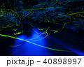 源氏蛍 蛍 光の写真 40898997