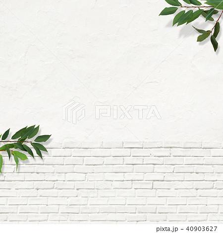 背景-白壁-葉 40903627