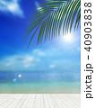 背景-南国-海-空 40903838