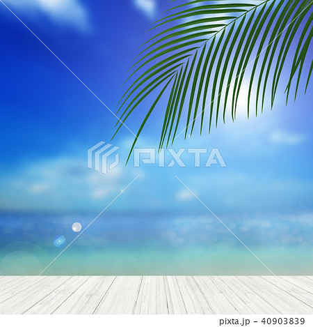 背景-南国-海-空 40903839