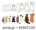 横向きに見上げる小型犬と猫のボーダーセット 40907193