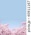満開の桜 40911167