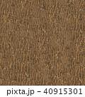 Wooden Bark. Seamless Tileable Texture. 40915301