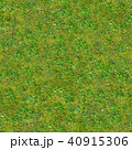 Green Grass. Seamless Tileable Texture. 40915306