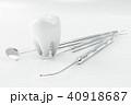 歯 立体 3Dのイラスト 40918687