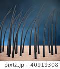 髪 毛 ヘアのイラスト 40919308