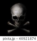 40921874