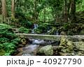 瓜割の滝 名水百選 初夏の写真 40927790