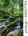 瓜割の滝 名水百選 初夏の写真 40927793