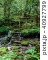 瓜割の滝 名水百選 初夏の写真 40927799