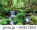 瓜割の滝 名水百選 初夏の写真 40927803