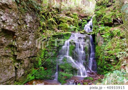 蓼仙の滝 滝 40933915