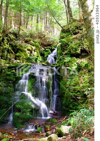 蓼仙の滝 滝 40933964