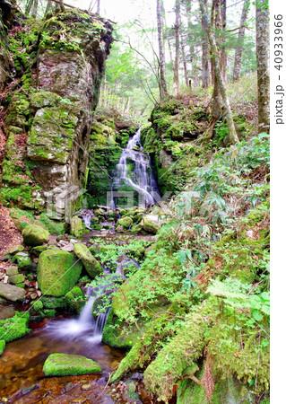 蓼仙の滝 滝 40933966
