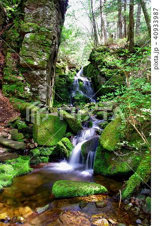 蓼仙の滝 滝 40933987