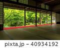 圓光寺 新緑 40934192