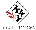 唐辛子 筆文字 文字のイラスト 40942043
