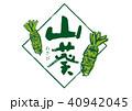 山葵 筆文字 40942045