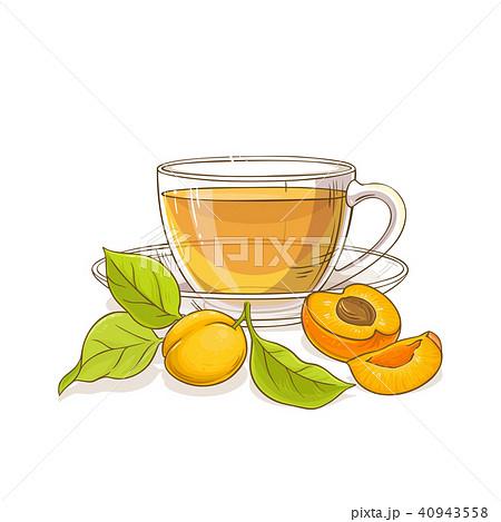 apricot tea illustration 40943558