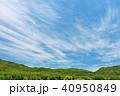 青空 初夏 山の写真 40950849