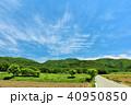 青空 初夏 山の写真 40950850