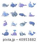 くじら クジラ 鯨のイラスト 40953882