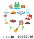 Argentina travel icons set, cartoon style 40955146