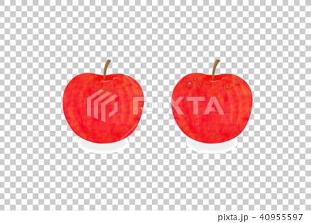 りんご 40955597