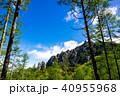 瑞牆山 山 日本百名山の写真 40955968