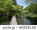 秋田県大仙市 砂敷神社参道 40959186