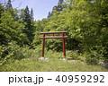 秋田県大仙市 砂敷神社鳥居 40959292