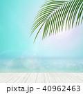 夏 南国 海のイラスト 40962463
