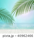 40962466