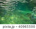 赤目四十八滝 滝 自然の写真 40965500