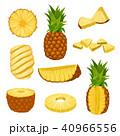 パイナップル パイン パインアップルのイラスト 40966556