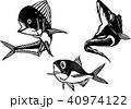 モノクロイラスト・シイラ、タチウオ、キンメダイ (ベクター) 40974122