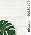 背景-植物-白壁 40980102