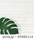 背景-植物-白壁 40980114