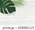 背景-植物-白壁 40980115