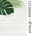 背景-植物-白壁 40980121
