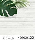 背景-植物-白壁 40980122