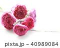 ドライフラワー 花 ラナンキュラスの写真 40989084