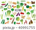 野菜のイラストセット 40991755