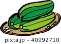 沖縄野菜のヘチマ3つ(ナーベーラー)カラー 40992710