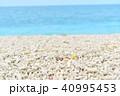 南国の海 40995453
