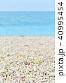 南国の海 40995454